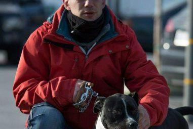 Emergenza bocconi avvelenati, in Puglia il primo corso per cani e padroni