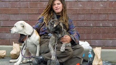 Freddo, appello ai parroci di Aidaa: aprite le chiese ai clochard con i cani