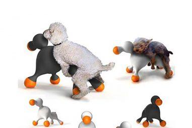 Cani e gatti: ecco i gadget più curiosi